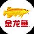 金龙鱼知食青年
